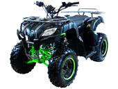 Квадроцикл MOTAX ATV Grizlik 200 LUX - Фото 1