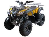Квадроцикл MOTAX ATV Grizlik 200 LUX - Фото 2