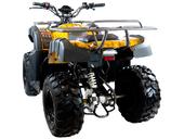 Квадроцикл MOTAX ATV Grizlik 200 LUX - Фото 4