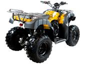 Квадроцикл MOTAX ATV Grizlik 200 LUX - Фото 5