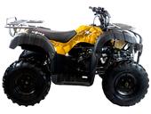 Квадроцикл MOTAX ATV Grizlik 200 LUX - Фото 6
