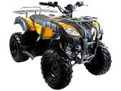 Квадроцикл MOTAX ATV Grizlik 200 LUX - Фото 7