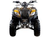 Квадроцикл MOTAX ATV Grizlik 200 LUX - Фото 8