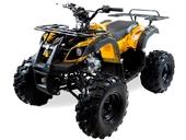 Подростковый квадроцикл Motax ATV Grizlik 7 125 cc (125 кубов) - Фото 21