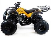 Подростковый квадроцикл Motax ATV Grizlik 7 125 cc (125 кубов) - Фото 22