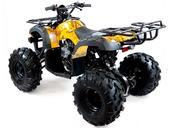 Подростковый квадроцикл Motax ATV Grizlik 7 125 cc (125 кубов) - Фото 23