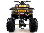 Подростковый квадроцикл Motax ATV Grizlik 7 125 cc (125 кубов) - Фото 24