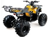 Подростковый квадроцикл Motax ATV Grizlik 7 125 cc (125 кубов) - Фото 25