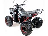 Подростковый квадроцикл Motax ATV Grizlik Super LUX 125 cc (125 кубов) - Фото 2