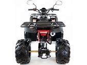 Подростковый квадроцикл Motax ATV Grizlik Super LUX 125 cc (125 кубов) - Фото 3