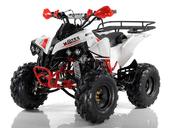 Подростковый квадроцикл Motax ATV Raptor Super LUX 125 cc (125 кубов) - Фото 0