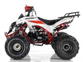 Подростковый квадроцикл Motax ATV Raptor Super LUX 125 cc (125 кубов) - Фото 2