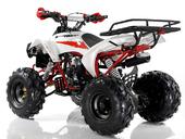 Подростковый квадроцикл Motax ATV Raptor Super LUX 125 cc (125 кубов) - Фото 3