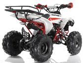 Подростковый квадроцикл Motax ATV Raptor Super LUX 125 cc (125 кубов) - Фото 5