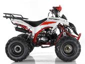 Подростковый квадроцикл Motax ATV Raptor Super LUX 125 cc (125 кубов) - Фото 6