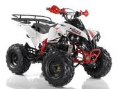 Подростковый квадроцикл Motax ATV Raptor Super LUX 125 cc (125 кубов) - Фото 7