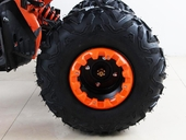 Подростковый квадроцикл Motax ATV T-Rex LUX 125 cc (125 кубов) - Фото 13