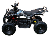 Электрический квадроцикл MOTAX X-16 1000W (1000 ватт) - Фото 1