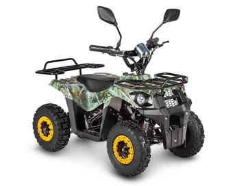 Электрический квадроцикл Voltrix Bars 36V1000W (1000 ватт)