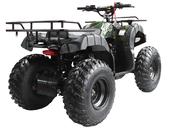 Квадроцикл WELS ATV Thunder 150 (бензиновый 150 куб. см.) - Фото 2