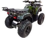 Квадроцикл WELS ATV Thunder 200 (бензиновый 200 куб. см.) - Фото 1
