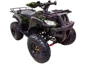 Квадроцикл WELS ATV Thunder 200 (бензиновый 200 куб. см.) - Фото 2