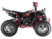 Квадроцикл WELS EVO X 200cc (бензиновый 200 куб. см.) - Фото 2