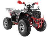 Квадроцикл WELS EVO X 200cc (бензиновый 200 куб. см.) - Фото 3