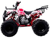 Квадроцикл WELS THUNDER 125 Basic (бензиновый 125 куб. см.) - Фото 1