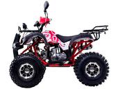 Квадроцикл WELS THUNDER EVO LUX X 125 (бензиновый 125 куб. см.) - Фото 1