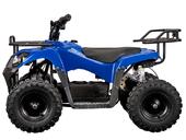 Электроквадроцикл YACOTA 800W (800 ватт) - Фото 1