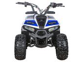 Квадроцикл Yacota Raposa (бензиновый 110 куб. см) - Фото 4