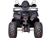 Квадроцикл YACOTA SELA 200 PRO (бензиновый 200 куб. см) - Фото 2