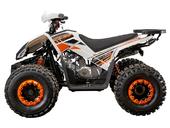 Квадроцикл Yacota Sporty XX (бензиновый 125 куб. см) - Фото 1