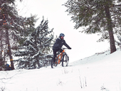 Велосипед Format 1311 Plus (2021) - Фото 5
