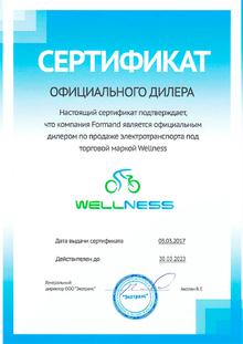 Официальный дилер Wellness в Москве