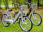 Электровелосипед E-motions Dacha (Дача) 350w Li-ion - Фото 1