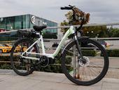 Электровелосипед E-motions Elegance - Фото 11