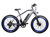 Электрофэтбайк El-sport bike TDE-08 500W - Фото 0
