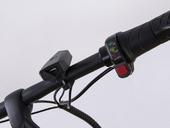 Электровелосипед Elbike Galant Light 250W - Фото 7