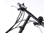 Электровелосипед Elbike Gangstar Standart 350W - Фото 4