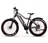 Hoverbot FB-2 PRO FATBIKE
