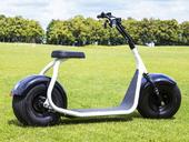 Электроскутер Citycoco Harley 2000W - Фото 8