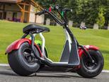 Электроскутер Citycoco Harley 2000W - Фото 11