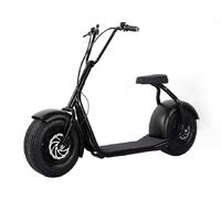 Citycoco Harley 2000W