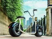 Электроскутер Citycoco Harley 2000W - Фото 22