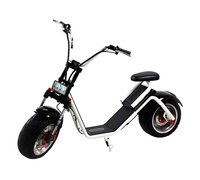 El-sport New Design Citycoco 1000W 60V, 12Ah
