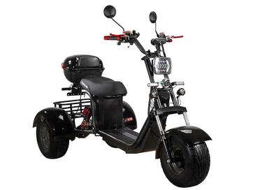 Электротрицикл SKYBOARD TRIKE BR40-3000 PRO FAST