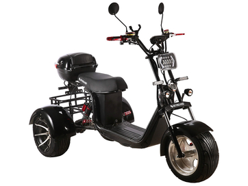 Электротрицикл SKYBOARD TRIKE BR60-3000 PRO