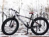 Фэтбайк Eurobike X5 - Фото 4